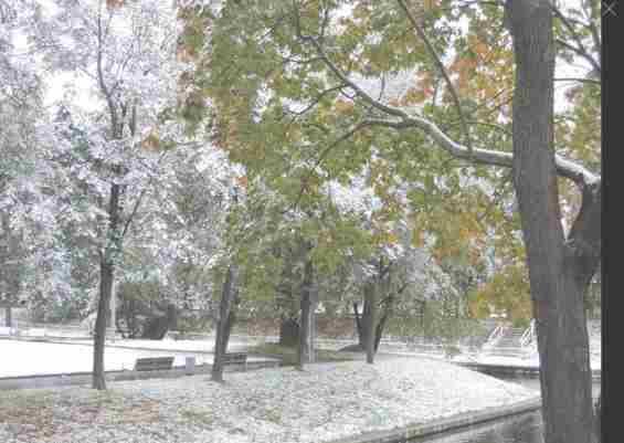 Парк Красная Пресня. Краснопресненская набережная